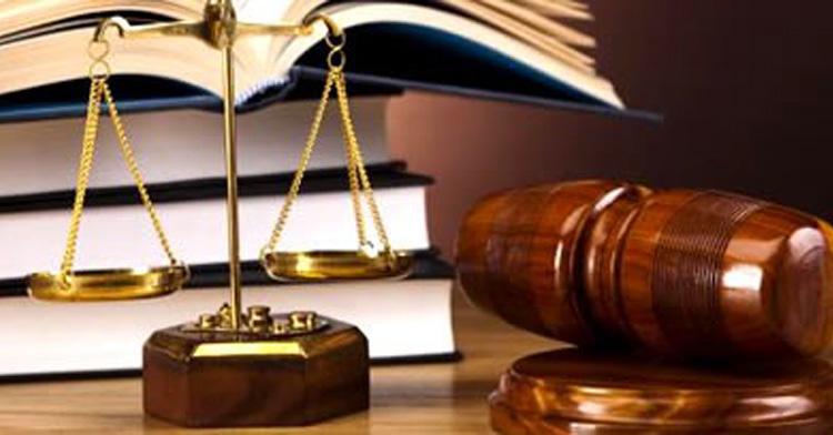 Aconselhamento e Orientação Jurídica | Projeto Cidadania + Ativa