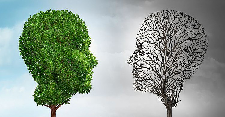 O que é a Perturbação de Humor Bipolar?; Quais os Sintomas?; Perturbação Bipolar e Outras Doenças; Tratamento e Terapia; Recomendações; A Família e os Amigos
